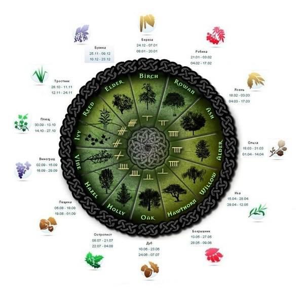 Японский гороскоп, знаки японского гороскопа, описание знаков японского гороскопа, гороскопы.