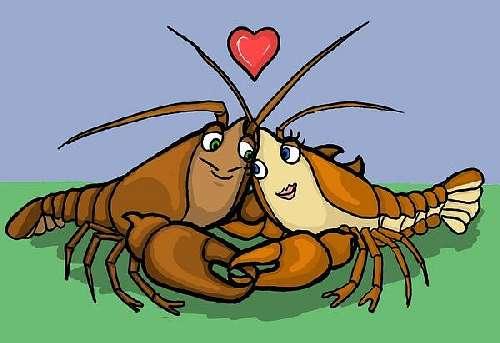 Гороскоп совместимость женщины-скорпиона и мужчины-рака.