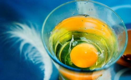 свойства яйца