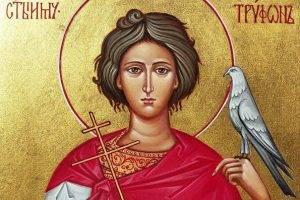 Молитва святому трифону о помощи